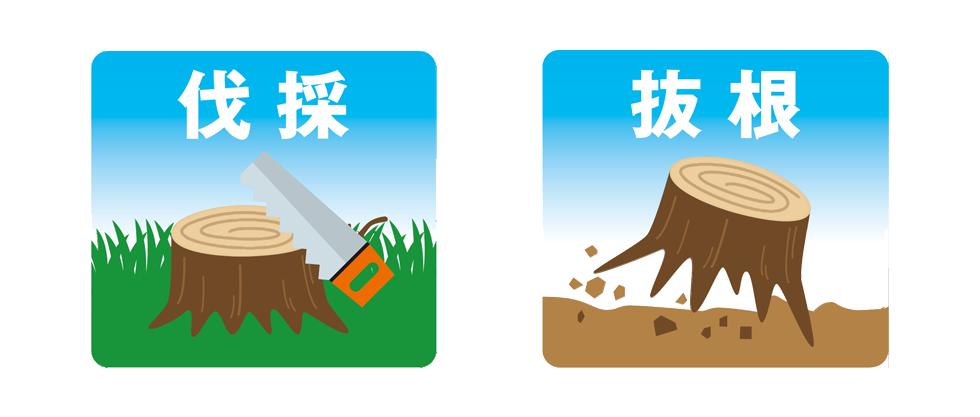 庭木の伐採,抜根