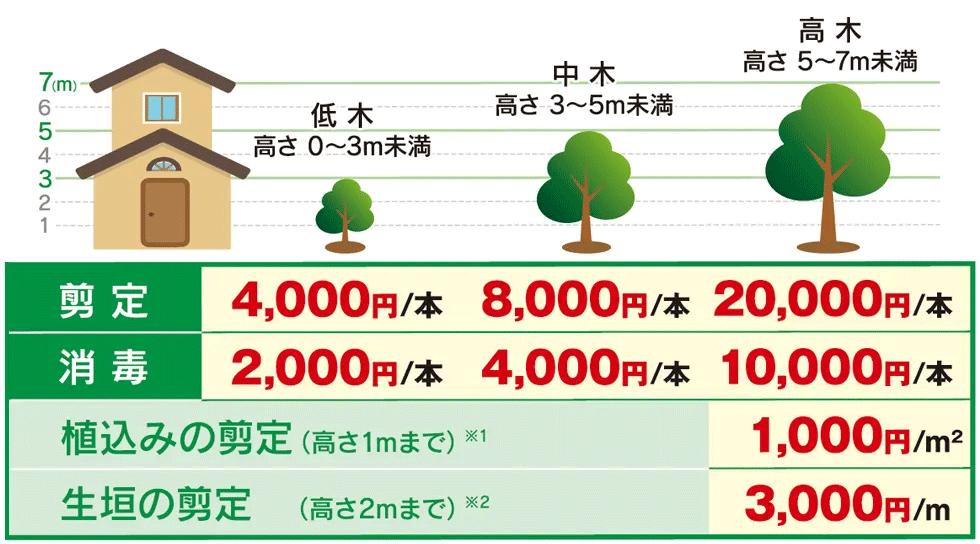 庭木の高さ目安と作業料金