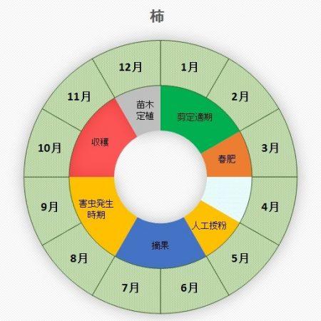 柿(カキ)お手入れカレンダー