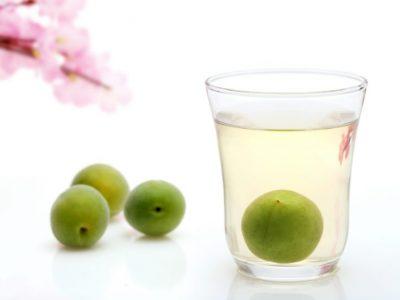庭の恵み「梅の実で果実酢づくり」