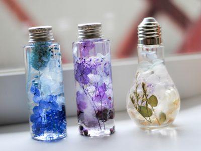 花と光を楽しむ植物標本「ハーバリウム」
