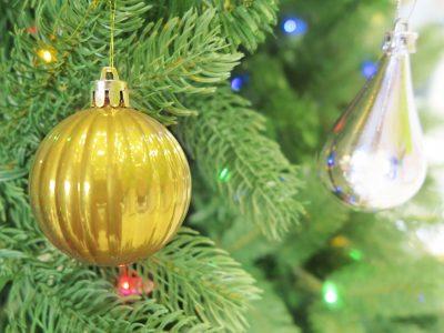 せいかつ緑化計画【聖なる夜を演出「クリスマスツリー向き樹種」】