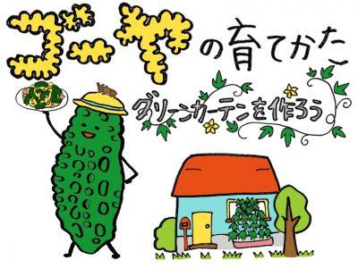 せいかつ緑化計画【ゴーヤを育ててグリーンカーテンを作ろう!】