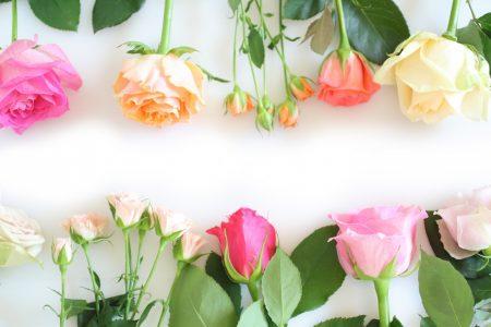 rose_frame