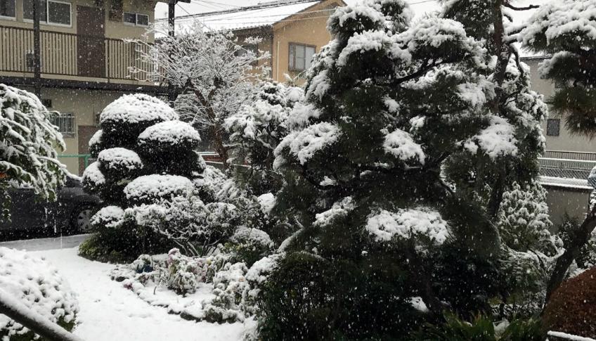 20161124初雪54年ぶり