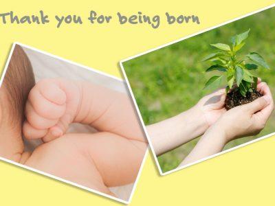 せいかつ緑化計画【大切なひとに贈りたい「記念樹・シンボルツリー」】