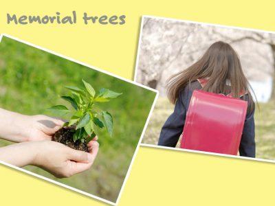新たなスタートに贈る「記念樹・シンボルツリー」